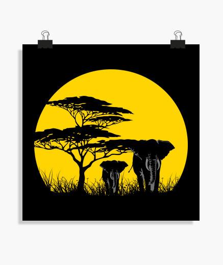 Poster Afrique du soleil