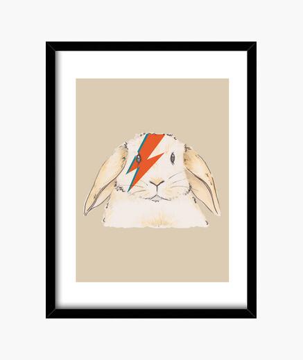 Cuadro Bowie rabbit