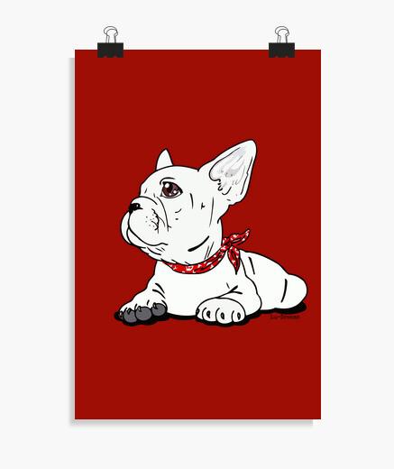 Póster Bulldog Francés.