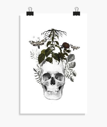 Póster Calavera con flores y plantas
