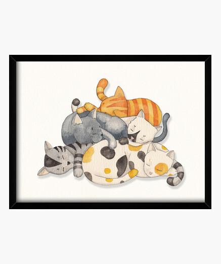 Cuadro Cat Nap - Siesta Time