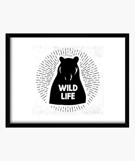 Cuadro Bear - Wild life
