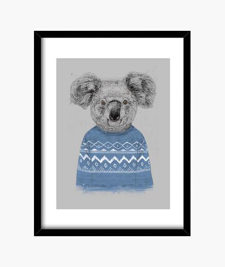 Cuadro koala de invierno