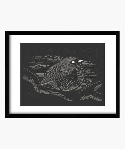 Cuadro Sparrow
