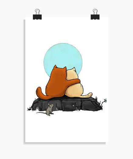 Poster due gatti