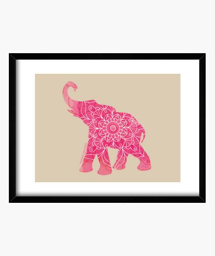 Cuadro elefante arrosa-elefante rosa