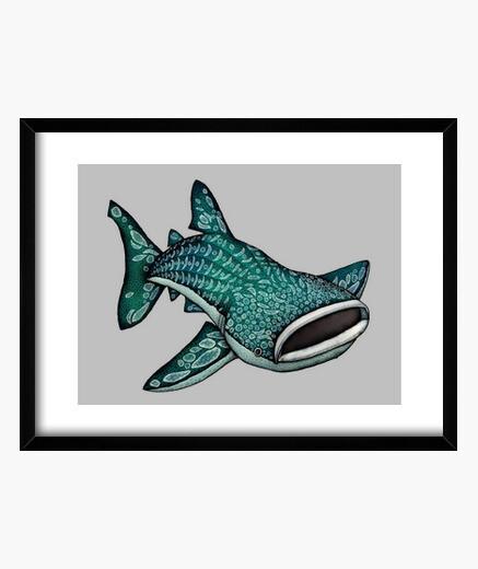 Cuadro foto whaleshark