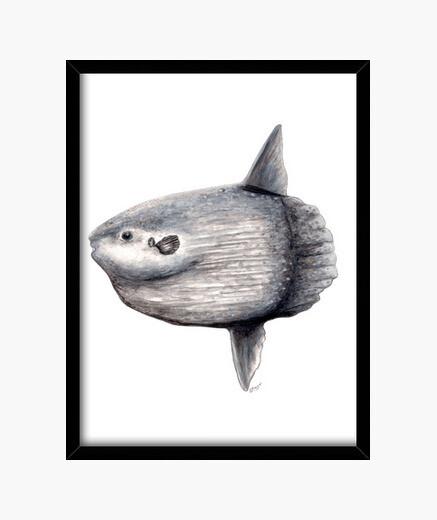 Frame fish moon (spring spring) framed print