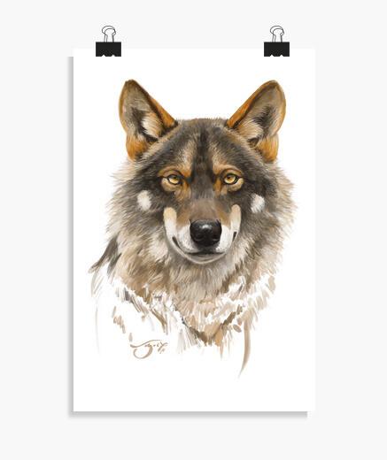 Poster Loup ibérique 1