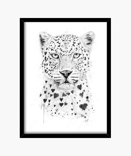 Cuadro Lovely leopard