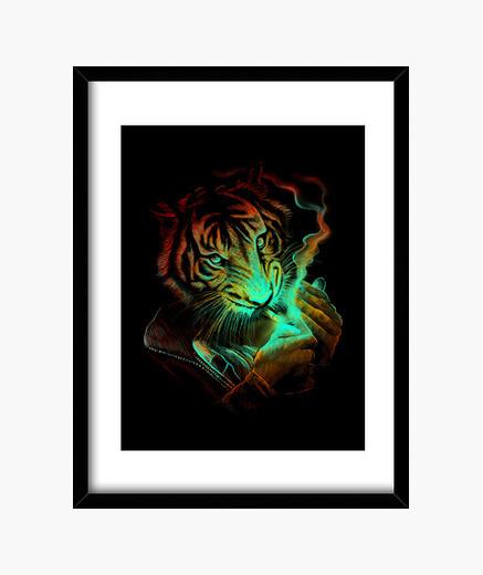 Cuadro luz del tigre