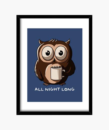 Cuadro Night Owl