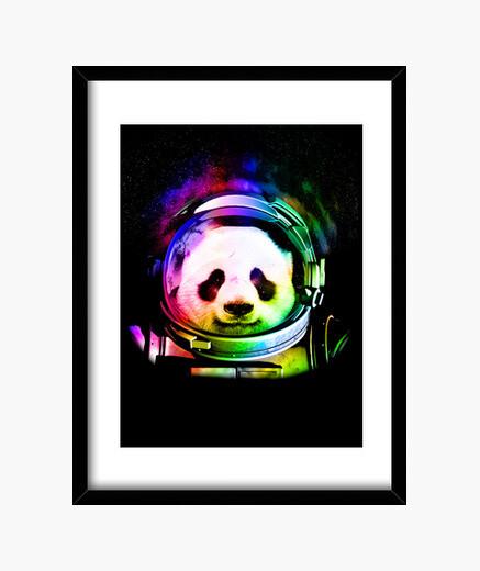 Cuadro panda cosmos