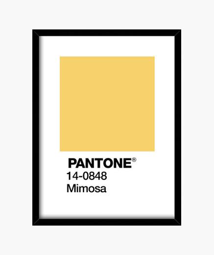 Cuadro Pantone 14-0848 TCX