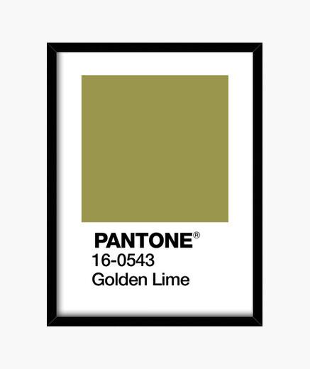 Cuadro Pantone 16-0543 TPX