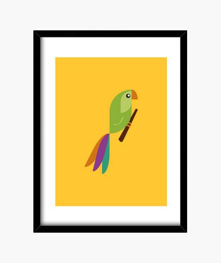Cadre perroquet