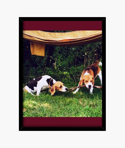 Cuadro perros jugando