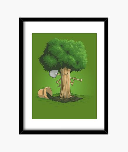 Cuadro Plant a-tree