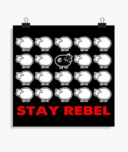 Poster - Black Sheep Rebel