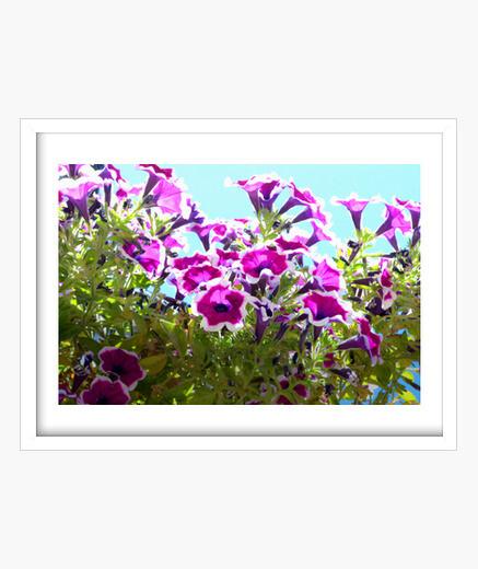 Cuadro Purple Flowers
