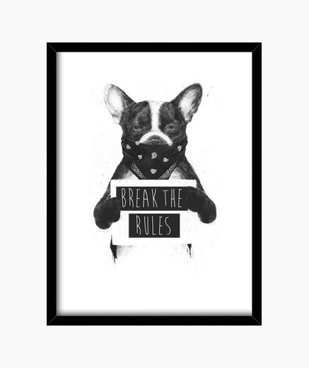 Cuadro Rebel dog