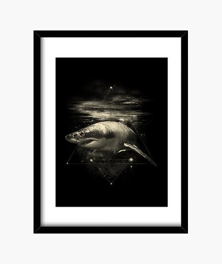 Cadre requin dans l'espace