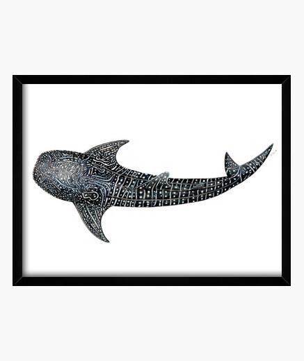 Quadro squalo balena per sub tela