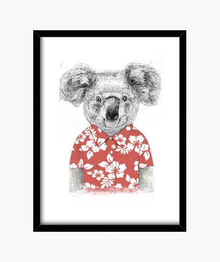 Summer koala framed print