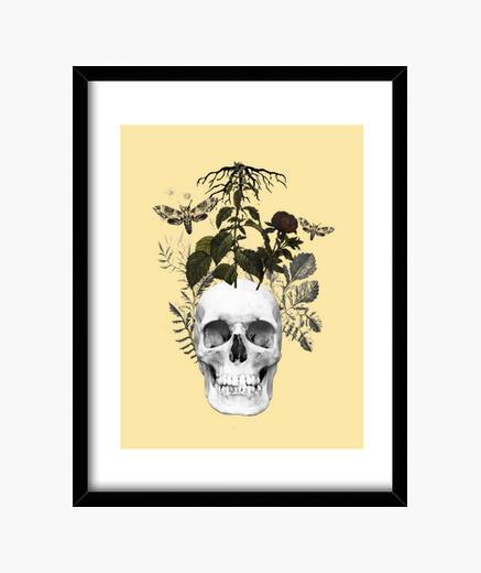 Quadro teschio con fiori e piante