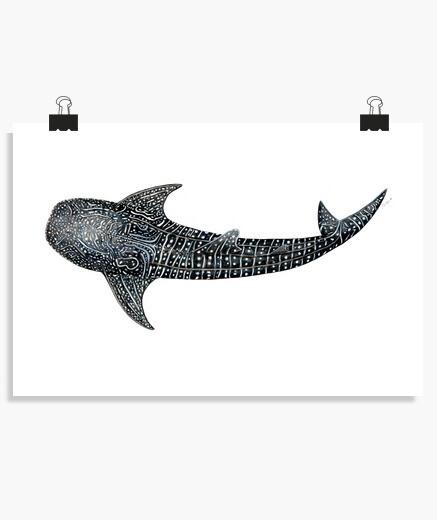 Póster Tiburón ballena para buceadores
