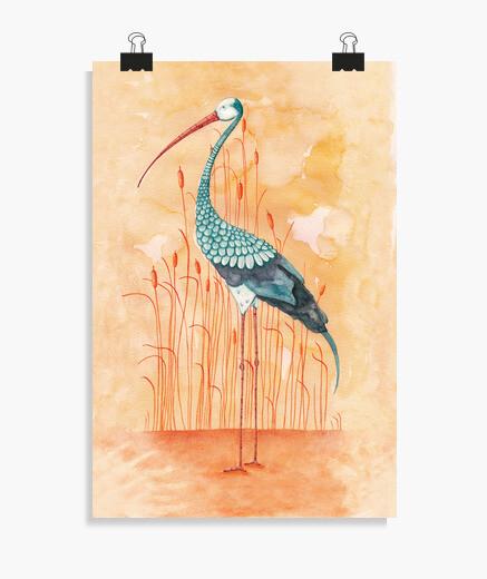 Poster une cigogne exotique