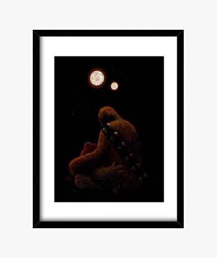 Cuadro Wookie <3 Ewok