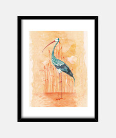 1. An Exotic Stork