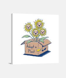 adopter une plante