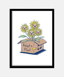 adottare una pianta