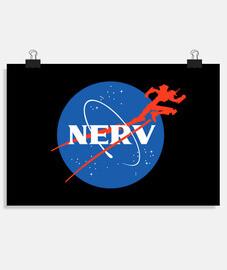 aeronáutica nerv