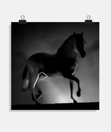 affiche cheval y.es 062a 2019 cheval