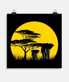 Afrique du soleil