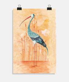 An Exotic Stork
