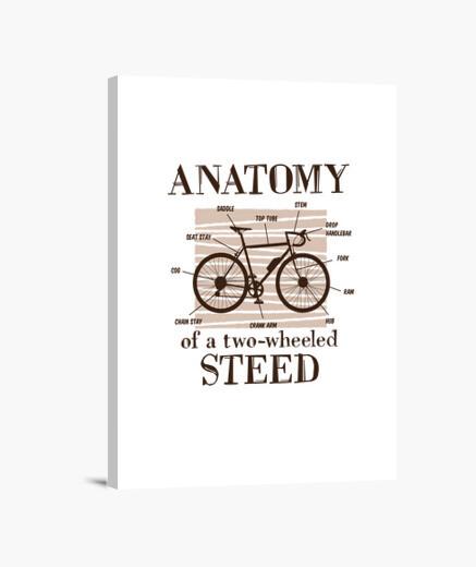 Lienzo anatomía de un corcel de dos ruedas