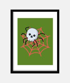 Araña calavera .