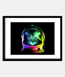 astronauta gatto