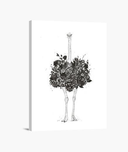 Lienzo avestruz floral
