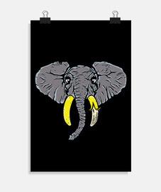 banana elefante