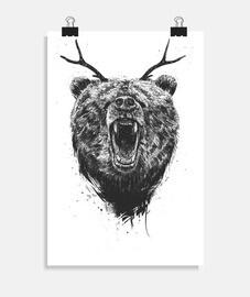 bear angry