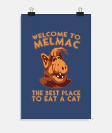 benvenuti a melmac- alf