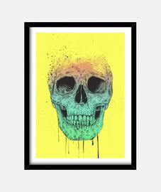 boîte de crâne pop art