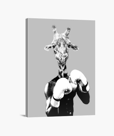 Boxing giraffe canvas