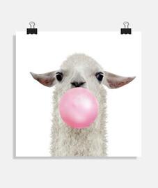 Bubble gum lama