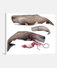 Cachalotes Lienzo Horizontal 4:3 - (40 x 30 cm)